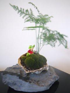 Saikei-shell on rock