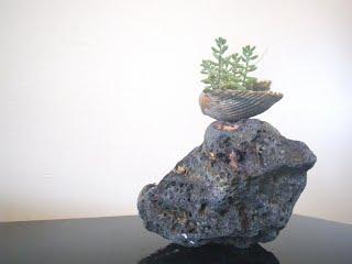 Saikei shell on fulgurite rock